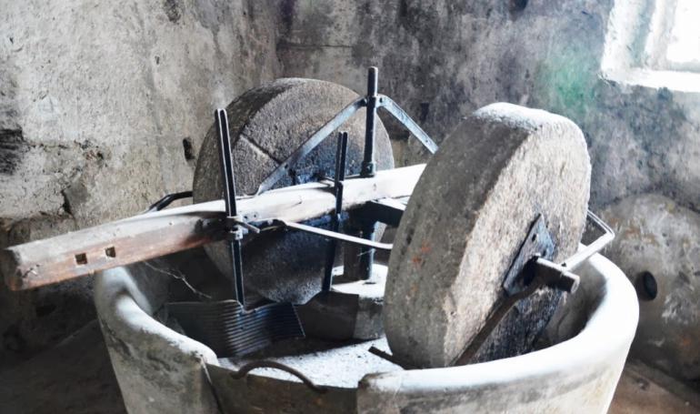 Produzione Olio - Frantoio